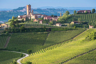 barbaresco-langhe_small